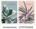 cover design concept in vintage ... | Shutterstock .eps vector #1193705683