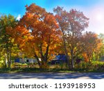 autumn nature of the south of...   Shutterstock . vector #1193918953