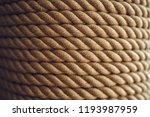 beautiful texture is the light... | Shutterstock . vector #1193987959