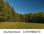 meadows and forest in sumava... | Shutterstock . vector #1193988373