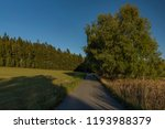 meadows and forest in sumava... | Shutterstock . vector #1193988379