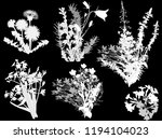 illustration with set of wild... | Shutterstock .eps vector #1194104023