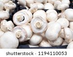 white champignons close up  the ...   Shutterstock . vector #1194110053