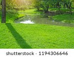fresh green carpet grass yard ... | Shutterstock . vector #1194306646