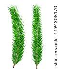 green lush spruce branch.... | Shutterstock .eps vector #1194308170