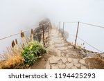 a  journey to unknown. hiking... | Shutterstock . vector #1194425293