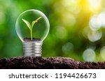 The Bulb Is Located On The...