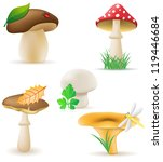 set icons mushrooms... | Shutterstock . vector #119446684