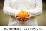 yellow orange pumpkin  small or ... | Shutterstock . vector #1194497740