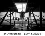 black and white too soft photo... | Shutterstock . vector #1194565396