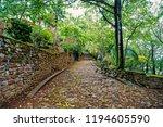 beautiful pebble or stony road  ... | Shutterstock . vector #1194605590
