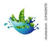 pea bean healthy natural... | Shutterstock .eps vector #1194639070