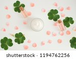 cosmetic nature skincare and...   Shutterstock . vector #1194762256