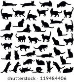 cats collection   vector... | Shutterstock .eps vector #119484406