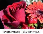 red rose bouquet | Shutterstock . vector #1194844966