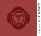 caduceus medical icon inside... | Shutterstock .eps vector #1194914656