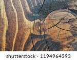weathered obsolete rough... | Shutterstock . vector #1194964393