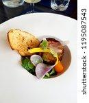 homemade terrine and garnish | Shutterstock . vector #1195087543