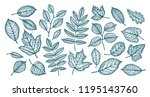decorative tree leaves. nature  ... | Shutterstock .eps vector #1195143760