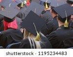 back of graduates on graduation ...   Shutterstock . vector #1195234483