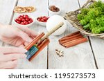 florist at work  how to make... | Shutterstock . vector #1195273573
