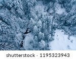 aerial view of snow covered... | Shutterstock . vector #1195323943