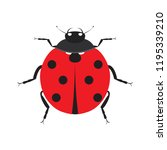 cute ladybug. insect beetle.... | Shutterstock .eps vector #1195339210