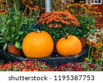 Autumn Decor With 2 Beautiful...