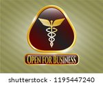 gold shiny badge with caduceus ... | Shutterstock .eps vector #1195447240