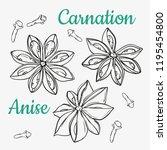star anise and carnation.... | Shutterstock .eps vector #1195454800