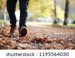 Autumn Park Man Walking Along A ...