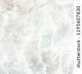 white marble texture | Shutterstock . vector #1195607830