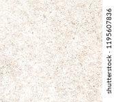 white marble texture | Shutterstock . vector #1195607836