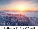 winter sunrise. winter forest... | Shutterstock . vector #1195625620