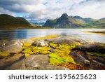 norway. lofoten islands....   Shutterstock . vector #1195625623