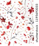 autumn background. creative... | Shutterstock . vector #1195693033