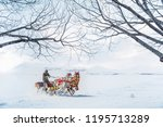 horses pulling sleigh in winter ... | Shutterstock . vector #1195713289