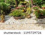 saint petersburg  usa   jun 16  ... | Shutterstock . vector #1195729726