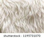 white long hair fur for... | Shutterstock . vector #1195731070