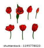 isolated vector set of colorful ... | Shutterstock .eps vector #1195778023