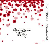 Red Poppies Banner Background...