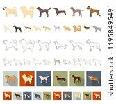 dog breeds cartoon icons in set ...   Shutterstock .eps vector #1195849549