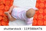 infant baby girl  top view.... | Shutterstock . vector #1195886476