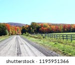 country road in fall in eastern ... | Shutterstock . vector #1195951366