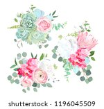 pink protea  ranunculus  rose ... | Shutterstock .eps vector #1196045509