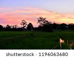 beautiful sky and golden clouds.... | Shutterstock . vector #1196063680