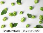 Fresh Green Hops On White...
