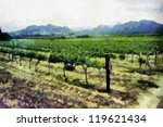 South African Vineyard Artisti...