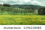 landscape of rapeseed in the... | Shutterstock . vector #1196218483