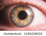 human eye detail | Shutterstock . vector #1196228410
